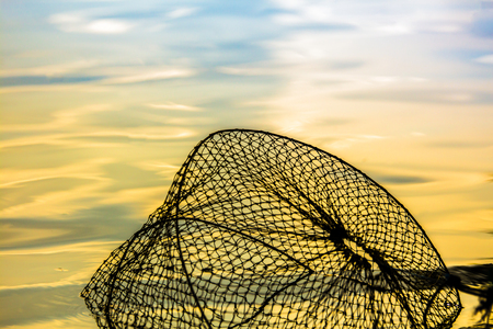 barbed: Net Fish yellow water national background