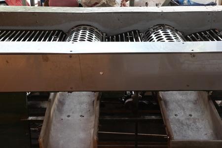 The Fruit sort sizing machine for orange