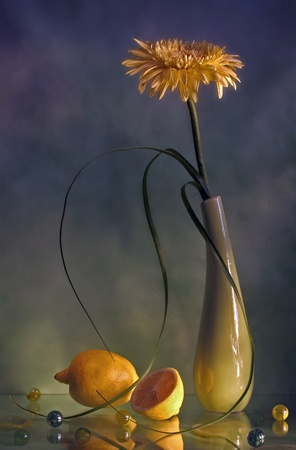 still life with yellow flower and  photo