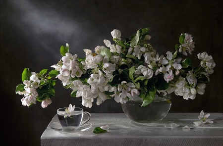 - still life with a flowering branch and a cup of water photo