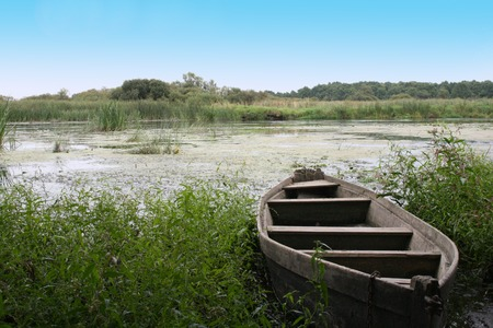 Old dhow in thrickets of a water grass Stock Photo