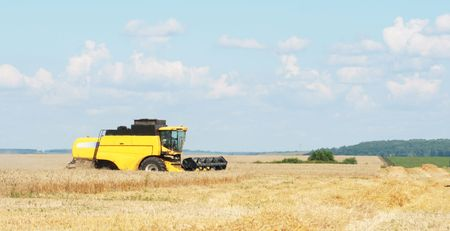mows: The beginning of harvesting on a wheaten field Stock Photo