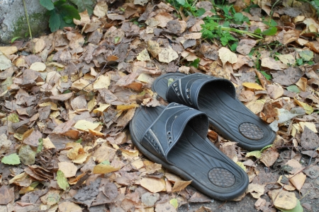 premise: Old bedroom-slippers on autumn foliage out of a premise Stock Photo