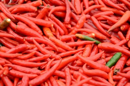 processed food: Pepper � una pianta che pu� essere utilizzato sia per breve durata. Alimenti freschi e trasformati