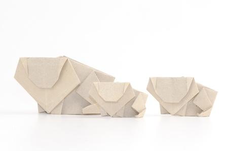 improvisation: The lion s paper on white background Stock Photo