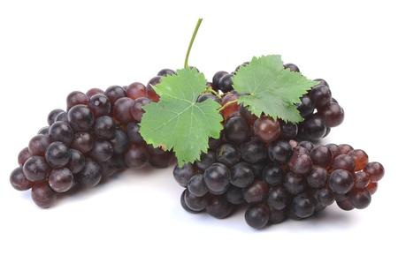 Grapes  BLACKOPOR