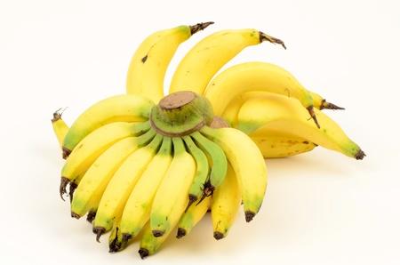 musa: Banana  Musa sapientum Linn