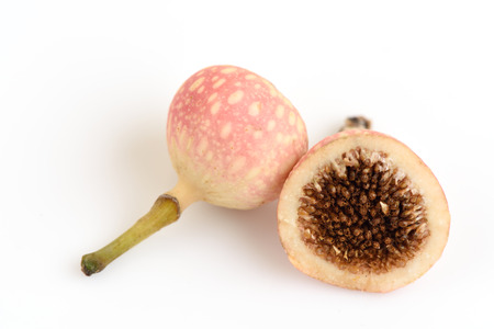Fig photo