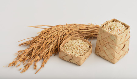 Germinated brown rice or GABA-rice, medicinal properties. Imagens - 32560416
