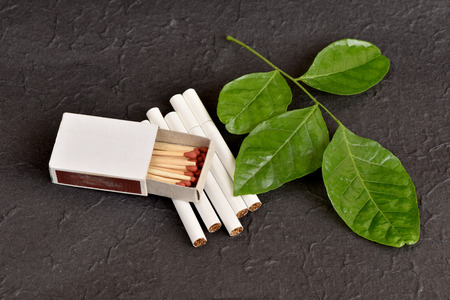 abstinence: Stop harming himself by quitting smoking, Clausena Heptaphylla, Prong Fah thai name Murraya siamensis Craib. Used as a herb for cessation cigarette.