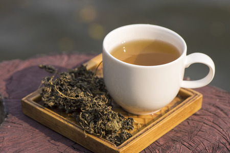 Jiaogulan Chinese name Gynostemma pentaphyllum  Thunb  Makino are dried leaves are used in tea for health drinks