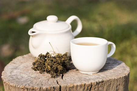 phlegm: Jiaogulan Chinese name Gynostemma pentaphyllum  Thunb  Makino are dried leaves are used in tea for health drinks