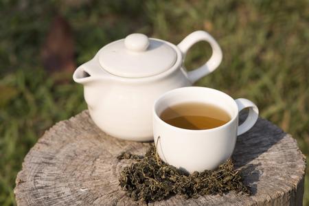 medicina tradicional china: Jiaogulan nombre chino Gynostemma pentaphyllum Thunb Makino se secan las hojas se utilizan en té para bebidas de la salud Foto de archivo