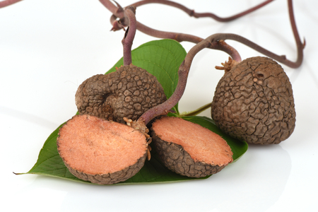 and cellulose: Stephania venosa (Blume) Spreng, medicinal properties.: Fruits, herbs or medicinal properties. Stock Photo