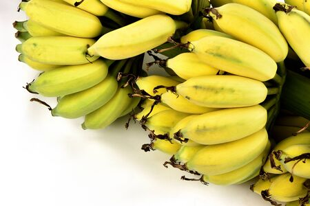 One bunch of Cultivated banana on white background.
