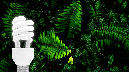 fluorescent bulb on tropical green leaf forest background