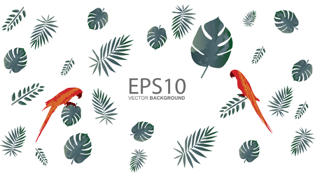 Macaw bird and tropical green leaf pattern background