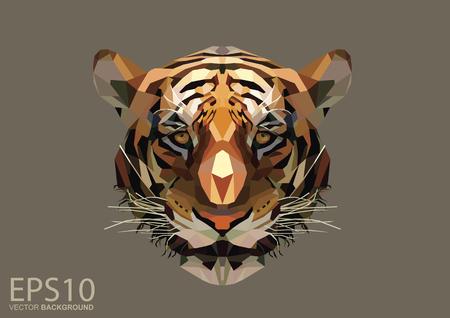Impression de fond de tête de tigre à faible polygone. Illustration EPS 10. Vecteurs