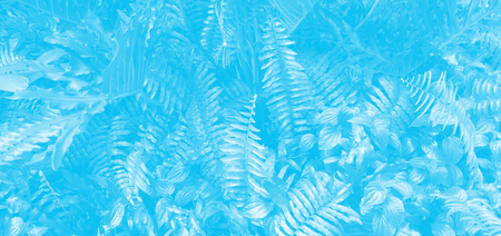 Vertical garden with tropical leaf. Monotone blue.