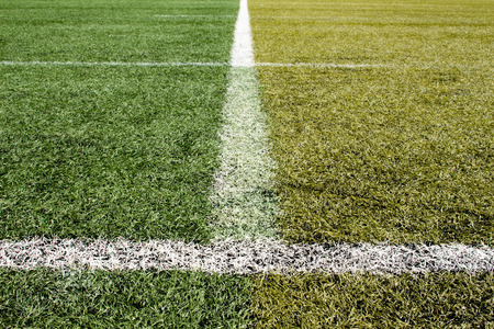 differ: differ color of artificial grass