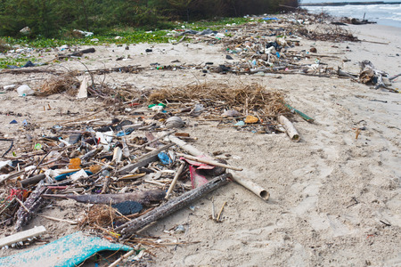 Beach pollution  Every day, Garbage on the beach photo