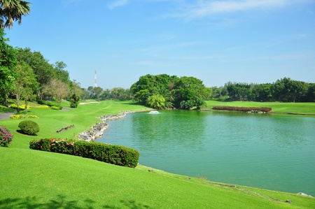 Golf course, tree