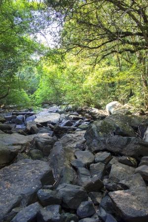 Mountain stream among the stones Stock Photo