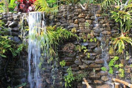 Water fall in garden