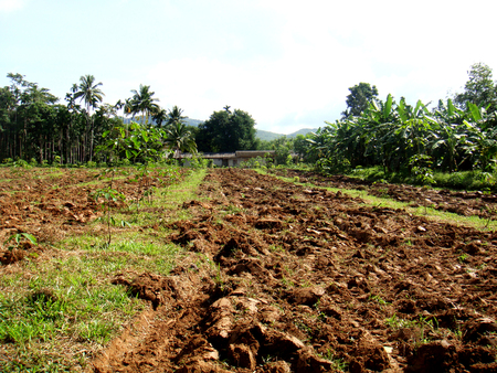 Brown soil,plowed soil of an agricultural field