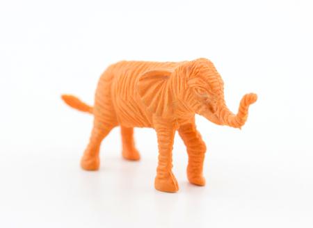 sense of sight: Animal plastic toy
