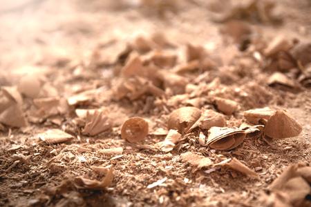 Wood sawdust closeup. Sawdust floor texture. Milling machine. Sawdust texture, background. Zdjęcie Seryjne
