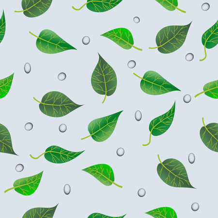 leaf pattern with drops Illustration