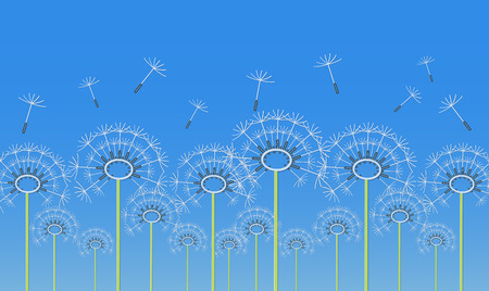 Outline dandelion flowers applique on a blue background. Vector illustration Illustration