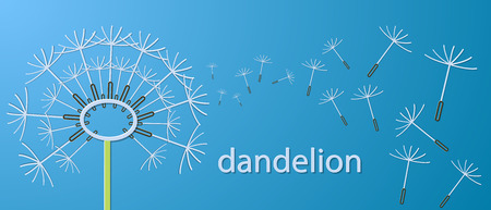 Outline dandelion flowers applique banner. Vector illustration.
