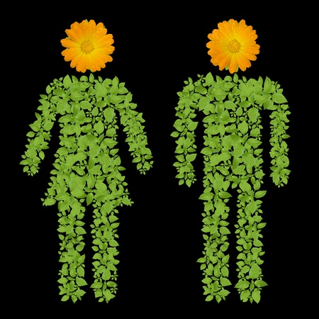 green plant Male and Female symbol photo