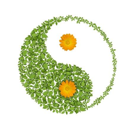 Floral yin yang s�mbolo, icono de las armon�as Foto de archivo