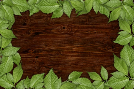 Old wooden background with  floral frame photo
