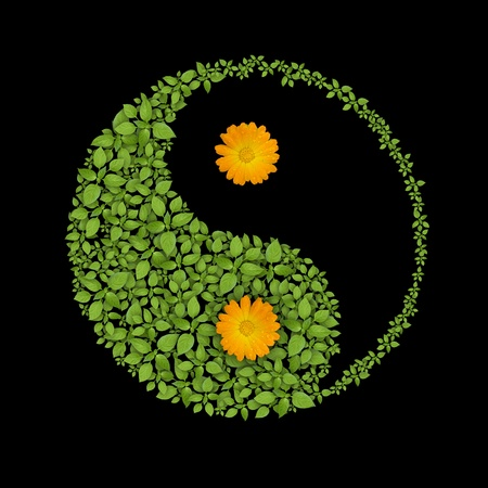 Floral yin yang symbol, harmonies icon Stock Photo - 10894333