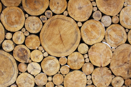 Stacked Logs Background photo