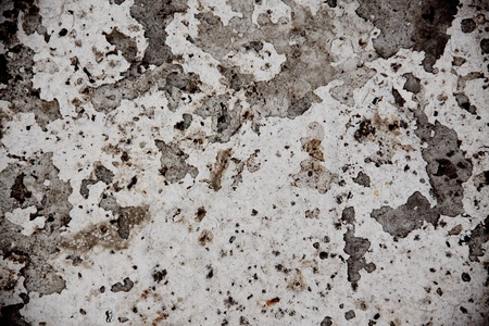 white concrete surface Stock Photo - 11480437