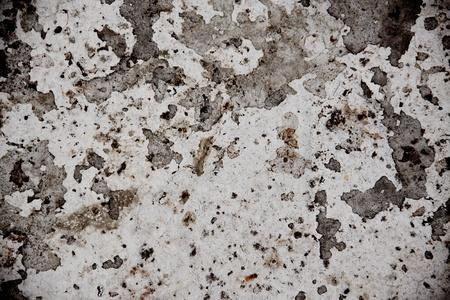 white concrete surface Stock Photo - 11480437