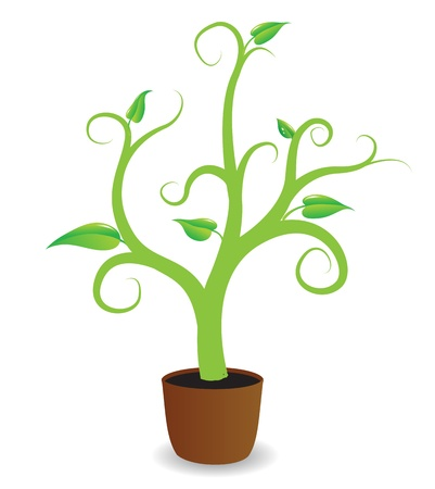 potted: A potted plant beginning to grow  Illustration