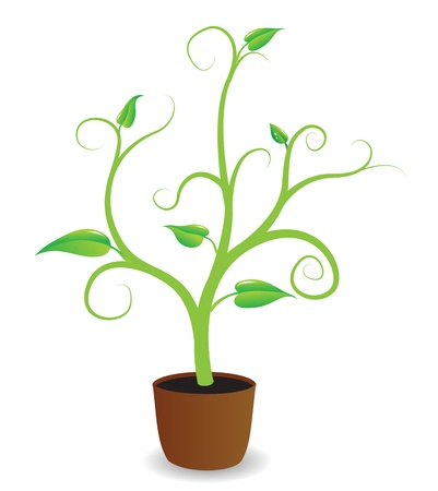 A potted plant beginning to grow Stock Vector - 13665730