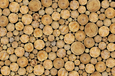 Stacked Logs Background Standard-Bild