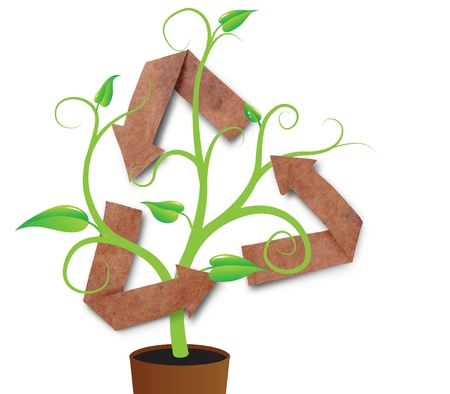 recycle symbol with young plant, isolated photo