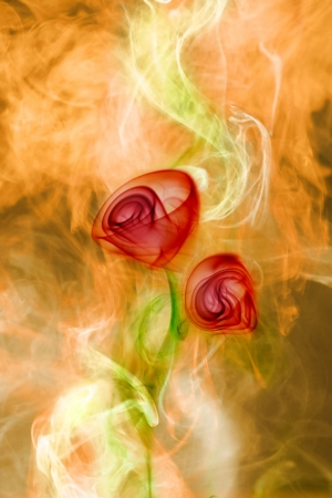 smoke flower on fire Stock Photo - 14067064