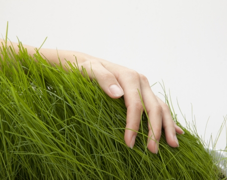 Hand above green grass photo