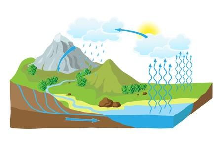 precipitacion: esquema del ciclo del agua en la naturaleza Vectores
