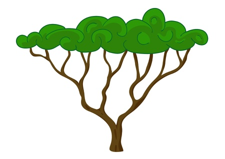 Tree vector isolated on white Stock Vector - 15916937