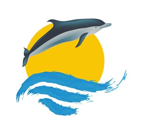 watery: Illustrazione Dolphin, Vettoriali